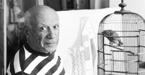 Xpo Center Bruges Picasso: Korting